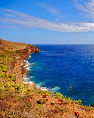Oceans Cape - Obrázkek zdarma pro Nokia Asha 303