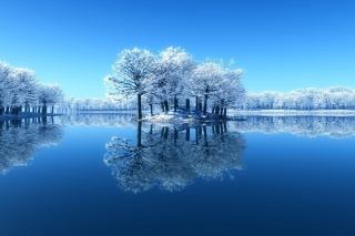 Free Winter Reflections Picture for Android, iPhone and iPad