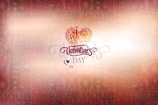 February 14 Valentines Day Wallpaper for Nokia Asha 200