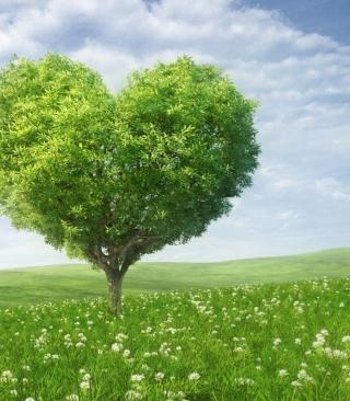 Nature Heart - Obrázkek zdarma pro Nokia Asha 305