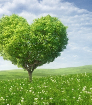 Nature Heart - Obrázkek zdarma pro Nokia Lumia 920
