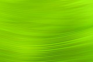 Green Pattern - Obrázkek zdarma pro Nokia Asha 302