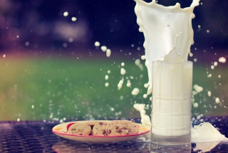 Glass Of Milk Wallpaper for Android, iPhone and iPad