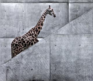 Giraffe Geometry - Obrázkek zdarma pro 1024x1024