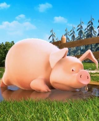 Cute Pig - Obrázkek zdarma pro Nokia Asha 309