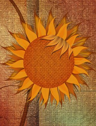 Sunflower - Obrázkek zdarma pro 640x960