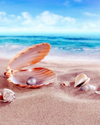 Shells and pearl - Obrázkek zdarma pro Nokia Asha 503