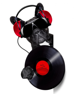 DJ Dog - Obrázkek zdarma pro iPhone 6 Plus