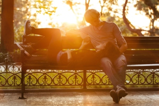 Romance In Park Background for Android, iPhone and iPad