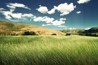 Green Valley Picture for Android, iPhone and iPad
