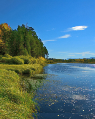 Lake Louise Panorama, Alberta, Canada - Obrázkek zdarma pro Nokia X1-01