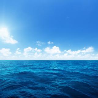 Ocean in Tropics - Obrázkek zdarma pro 320x320