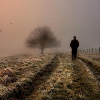 Lonely Man Walking In Field - Obrázkek zdarma pro 320x320