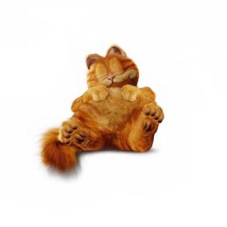 Lazy Garfield - Obrázkek zdarma pro 2048x2048