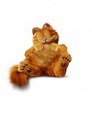 Lazy Garfield - Obrázkek zdarma pro Nokia 206 Asha