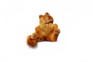 Lazy Garfield - Obrázkek zdarma pro Nokia Asha 210