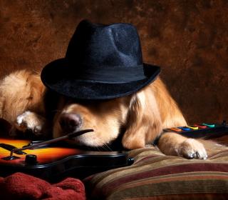 Dog In Hat - Obrázkek zdarma pro iPad 3