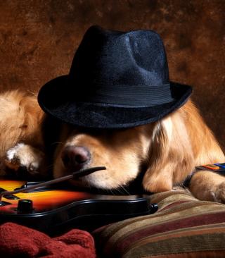 Dog In Hat - Obrázkek zdarma pro Nokia Lumia 505