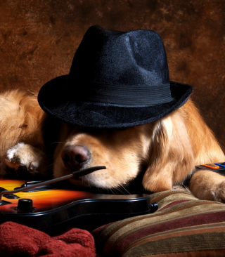 Dog In Hat - Obrázkek zdarma pro 360x480