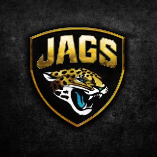 Jacksonville Jaguars NFL Team Logo - Obrázkek zdarma pro 320x320