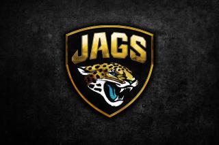 Jacksonville Jaguars NFL Team Logo - Obrázkek zdarma pro Nokia Asha 201