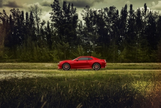 Free Red Chevrolet Camaro Picture for Android, iPhone and iPad