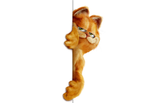 Garfield - Obrázkek zdarma pro Android 480x800