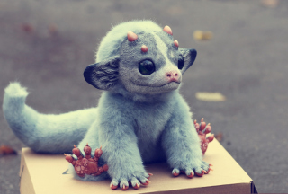 Gremlin Picture for Android, iPhone and iPad