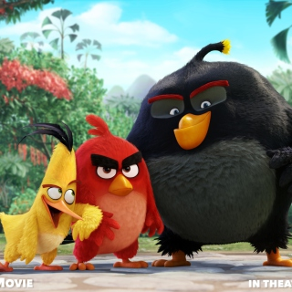 Angry Birds the Movie 2015 Movie by Rovio - Obrázkek zdarma pro iPad Air