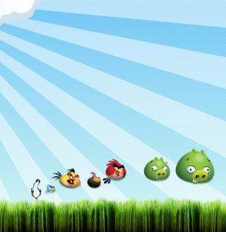 Angry Birds Bad Pigs - Obrázkek zdarma pro iPad 2