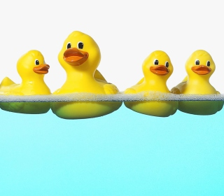 Rubber Ducks Taking Bath - Obrázkek zdarma pro 2048x2048