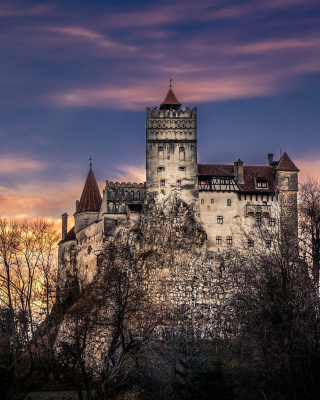 Bran Castle in Romania - Obrázkek zdarma pro 640x960
