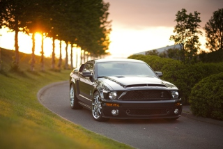 Free Ford Mustang Shelby GT500KR Picture for Android, iPhone and iPad