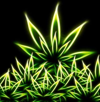 Marijuana - Obrázkek zdarma pro iPad 3