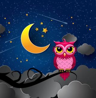 Silent Owl Night - Obrázkek zdarma pro 1024x1024