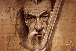 The Hobbit Gandalf Artwork - Fondos de pantalla gratis para LG E400 Optimus L3