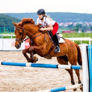Equestrian Sport, Equitation - Obrázkek zdarma pro iPad mini