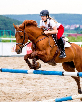 Equestrian Sport, Equitation - Obrázkek zdarma pro 320x480
