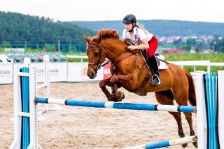 Equestrian Sport, Equitation - Obrázkek zdarma pro Nokia Asha 200