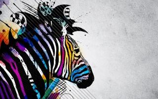 Colored Zebra - Obrázkek zdarma pro 1024x600