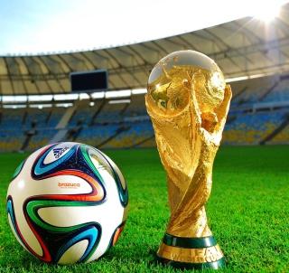 Fifa 2014 - Obrázkek zdarma pro iPad mini