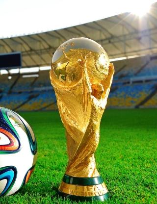 Fifa 2014 - Obrázkek zdarma pro Nokia Asha 501