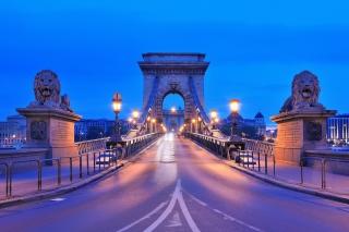 Budapest - Chain Bridge - Obrázkek zdarma pro Android 320x480