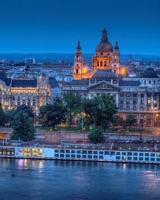 Budapest St Stephens Basilica and Danube Chain Bridge - Obrázkek zdarma pro 320x480