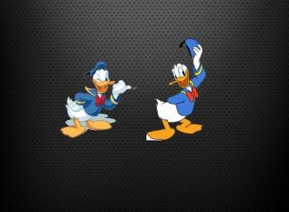 Donald Duck - Obrázkek zdarma pro Nokia XL