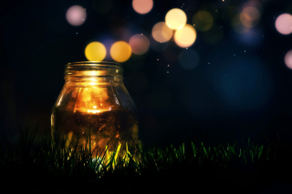 Glass jar in night - Obrázkek zdarma pro Widescreen Desktop PC 1600x900