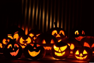 Halloween Pumpkins In The Dark - Obrázkek zdarma pro Widescreen Desktop PC 1280x800