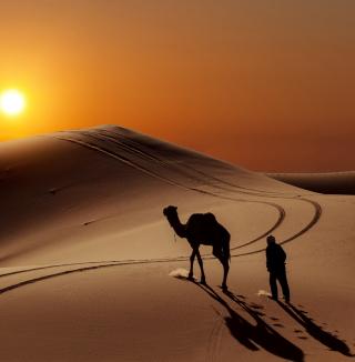 Desert - Obrázkek zdarma pro 128x128