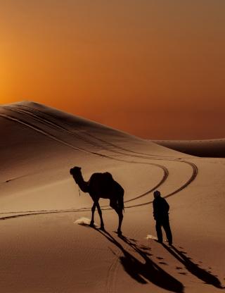 Desert - Obrázkek zdarma pro iPhone 6 Plus