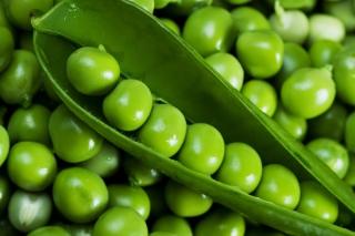 Green Peas - Obrázkek zdarma pro 1024x600